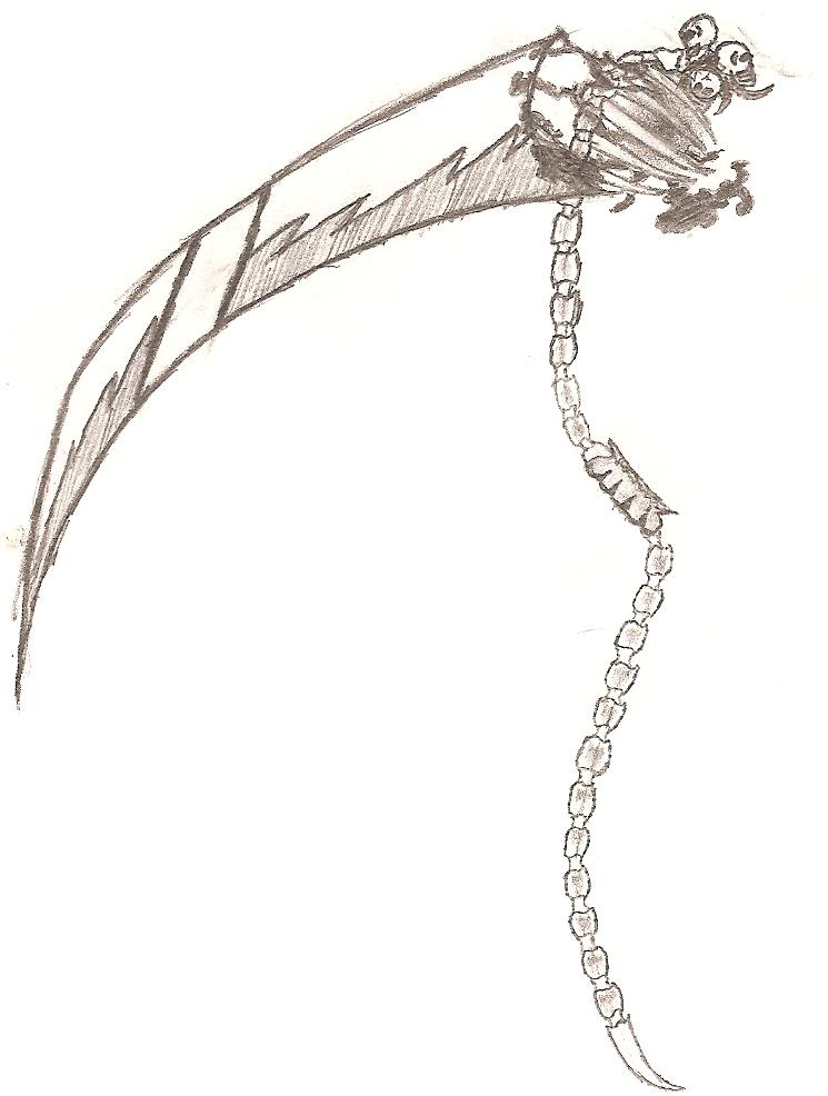 Drawn scythe spine Of Scythe Sword Horseman by