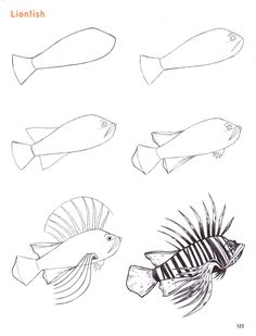 Drawn sea life How/things drawings traditional  animals