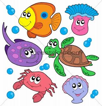 Drawn sea life aquatic animal Cute marine marine 1078849: Crestock