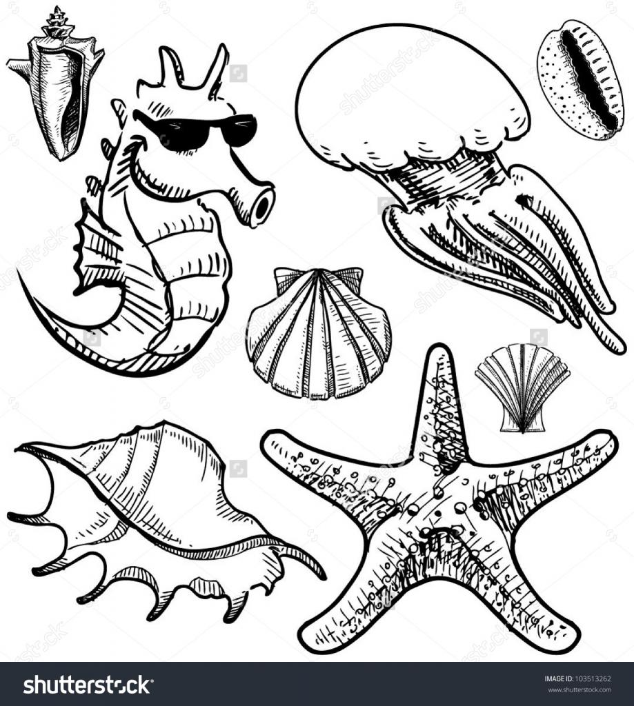 Drawn sea life aquatic animal Easy Drawing  Animal