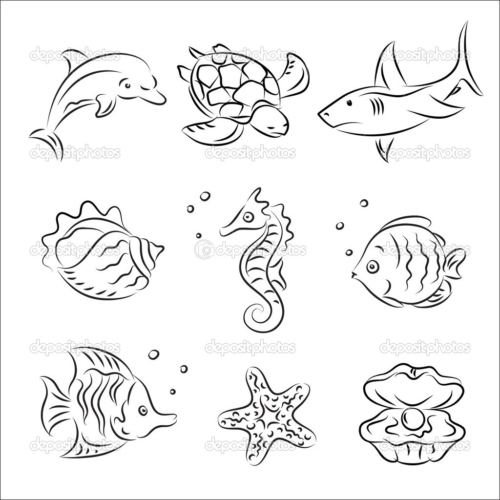 Drawn sea life aquatic animal To Sketches Similiar  Drawing