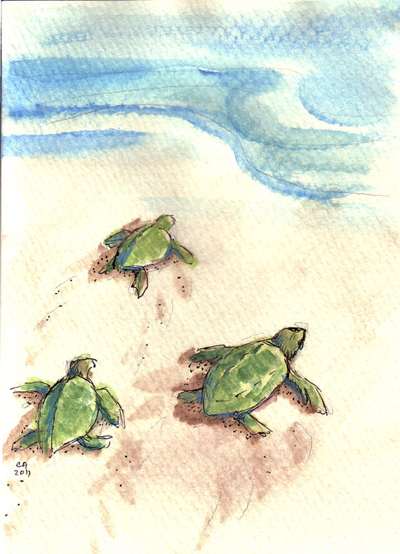 Drawn sea painted Babies Turtle painting on 3