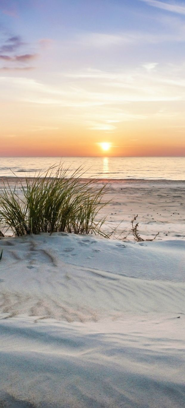 Drawn sea life beach sunset White beautiful sand photography on