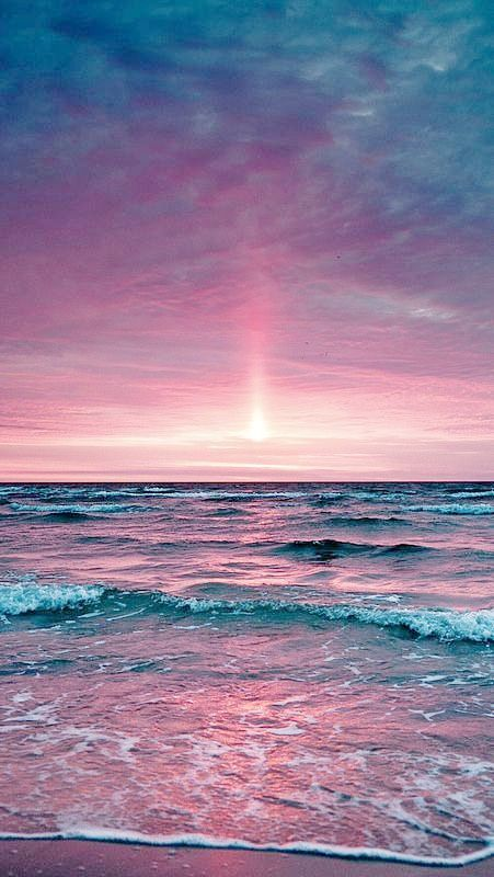 Drawn sea life beach sunset Pink Best & on Pinterest