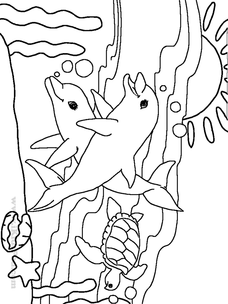 Drawn sea life ocean animal Archives sea coloring Printable With
