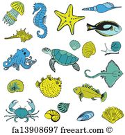 Drawn sea life vector Drawn Hand Animals Free hand