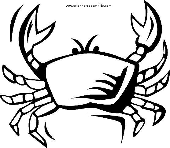Drawn sea life sea crab 13 printable theme coloring images