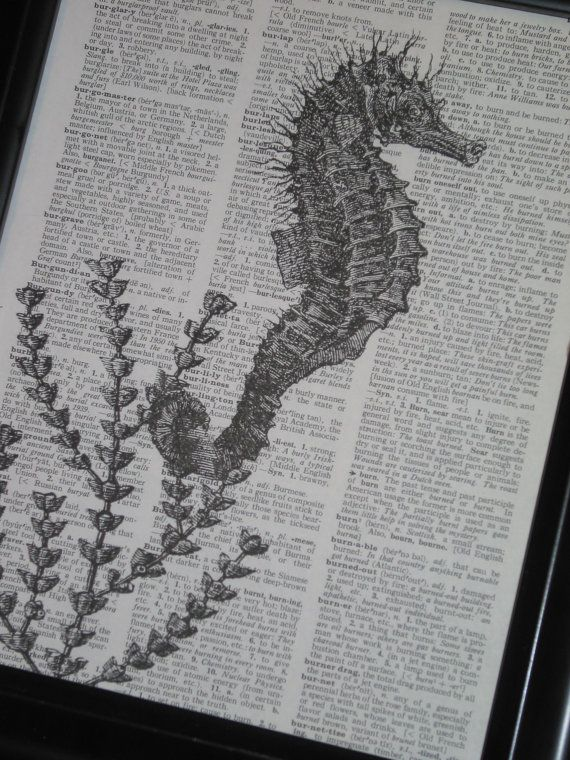 Drawn sea life seahorse Print Art A life art