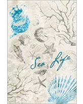Drawn sea life seashell Fish Drawing & Life Tan