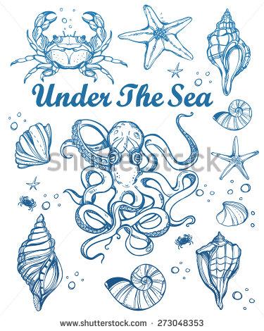 Drawn sea life starfish Vintage vintage Beautiful linear hand