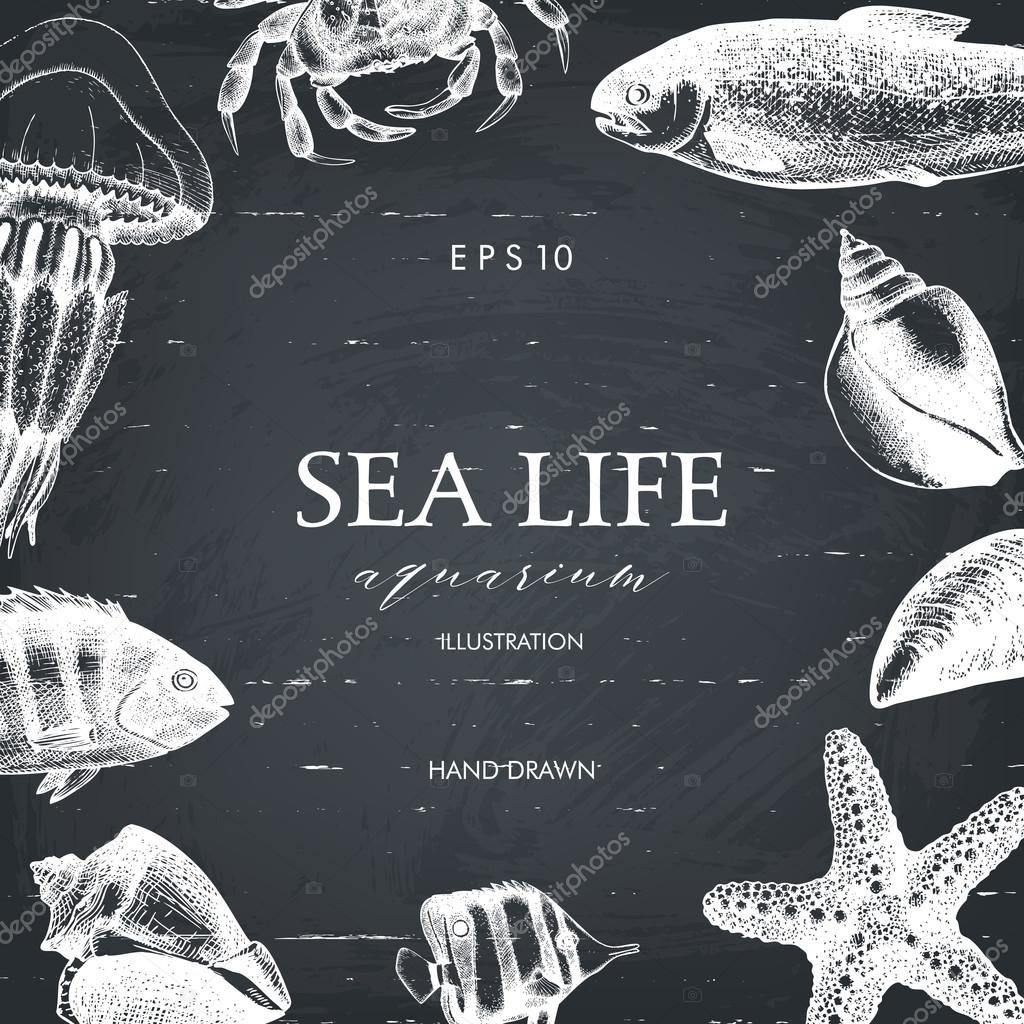 Drawn sea life animated With sea Vector squid life