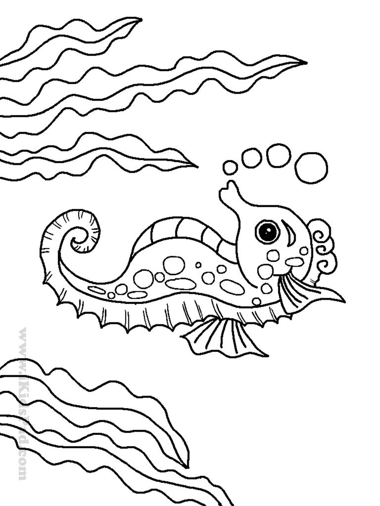 Drawn sea marine animal Animal Page Sea New Pages