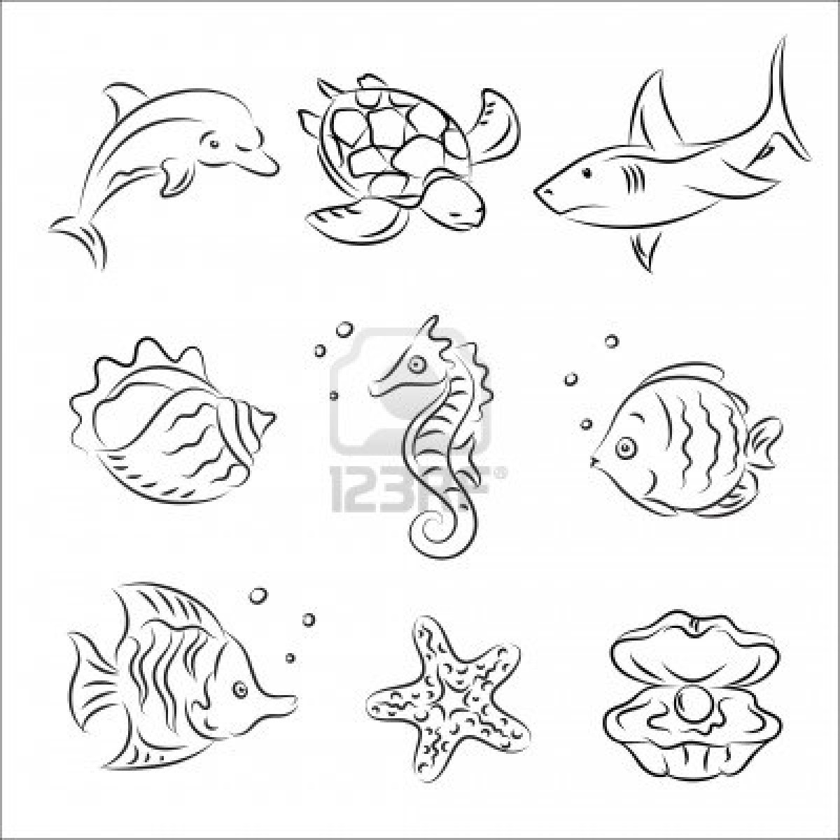 Drawn sea ocean creature Pictures animals Pages Coloring &
