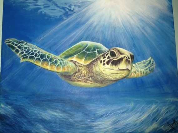 Drawn sea painted Green Turtle 25+ Turtle Painting