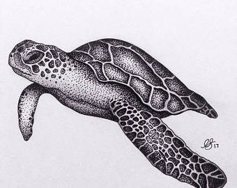 Drawn sea turtle abstract Sea A4 turtle art Print