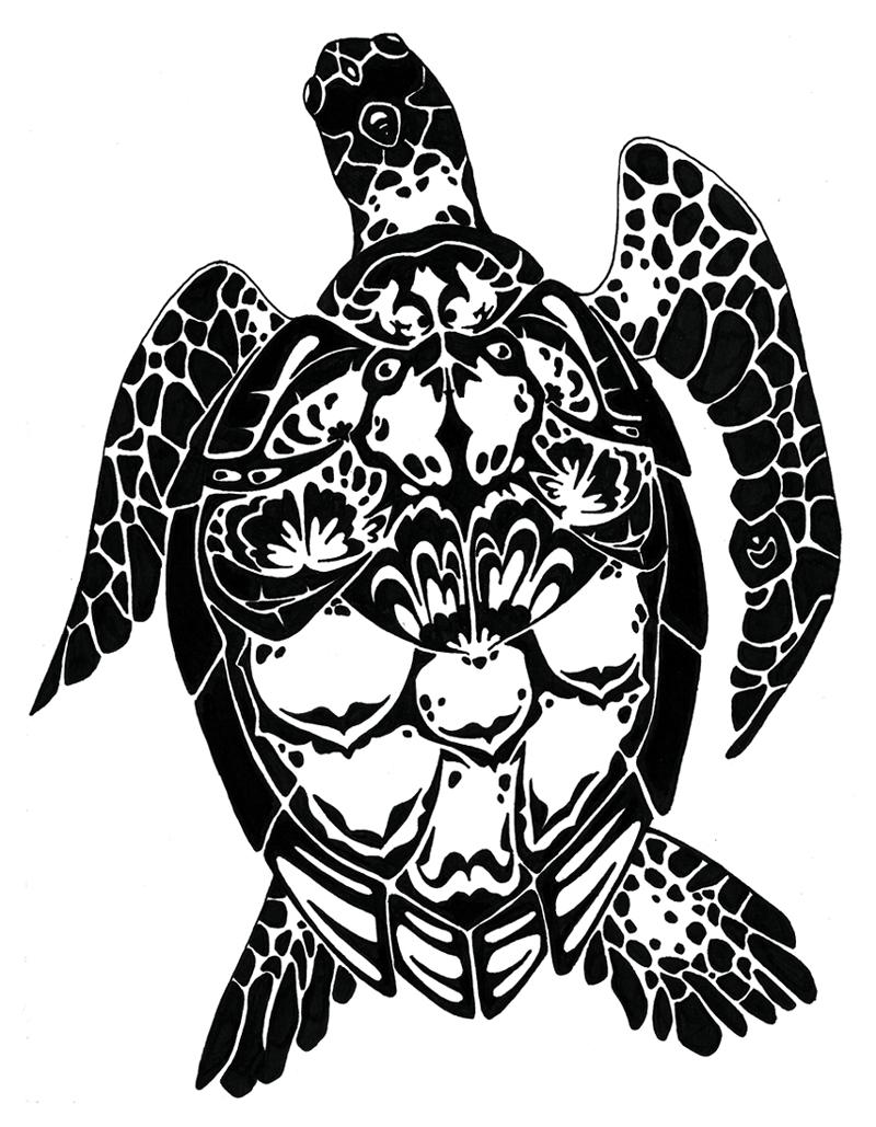 Drawn sea turtle chibi Turtles turtles chibi Aye muse