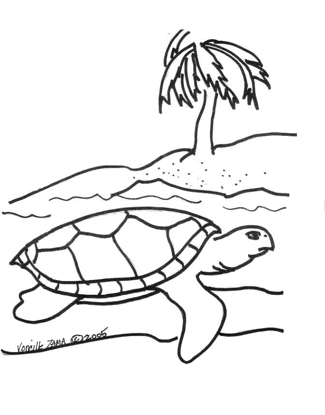 Drawn sea turtle colouring picture Coloring 2 Sea Page Turtle