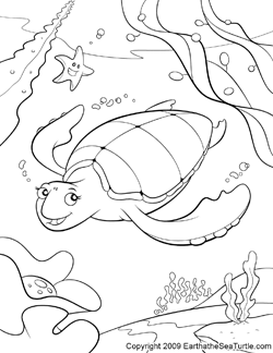 Drawn sea turtle colouring picture Pages sea turtle coloring Turtle