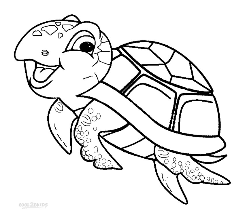 Drawn sea turtle colouring picture Turtle Pages Kids Cool2bKids Printable