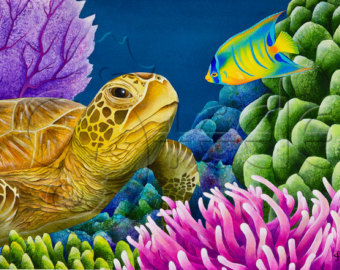 Drawn sea turtle queen angelfish Juvenile Etsy Sea