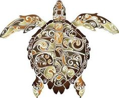 Drawn sea turtle scientific illustration 30W inspire Isabell and Abstract