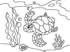 Drawn sea turtle underwate animal Coloring School Pin Friends