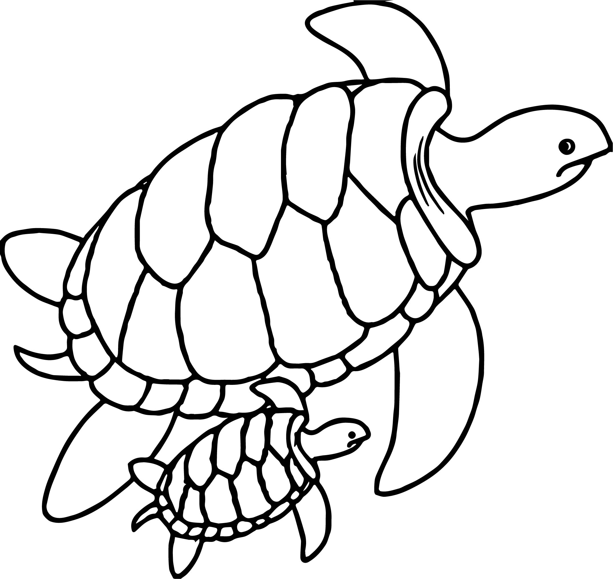 Drawn sea turtle underwate animal Swimming Sea Turtle Turtles Together