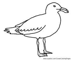 Drawn seagull cartoon  cartoon cartoon Search Pinterest