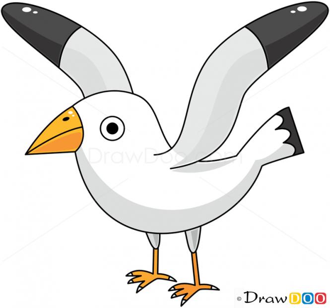 Drawn seagull cartoon Birds How Draw Seagull