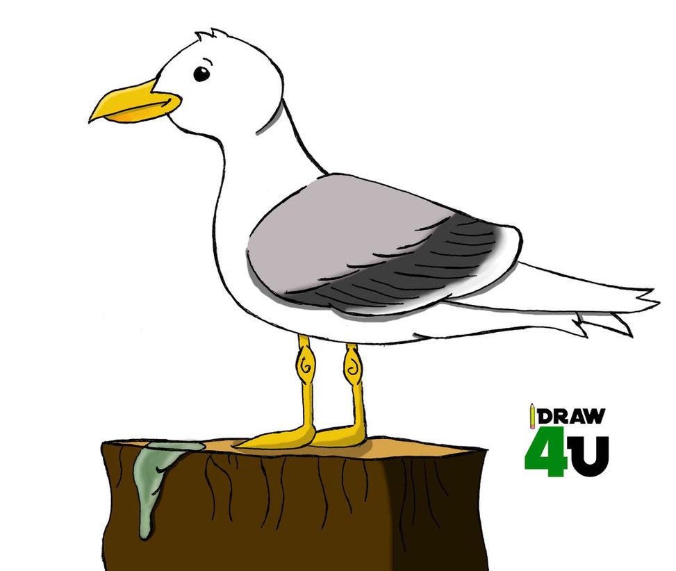 Drawn seagull cartoon Related Keywords DeviantArt By HallofFame