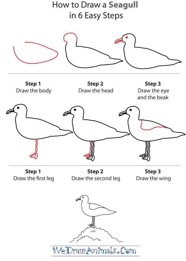 Drawn seagull seagul Seagull a Draw by Step