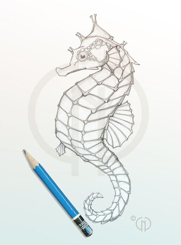 Drawn seahorse #studiocatherinenoel Pinterest seahorse sketch 25+