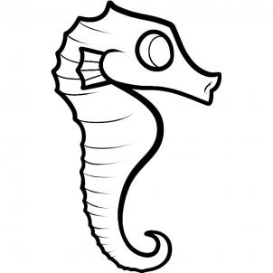 Drawn seahorse To a 6 seahorse how