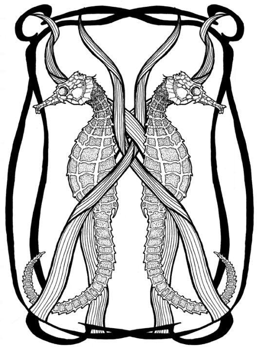 Drawn seahorse art deco Herd via Nouveau Handpulled $35
