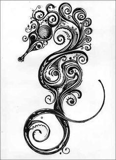 Drawn seahorse baby This more Seahorse  photo