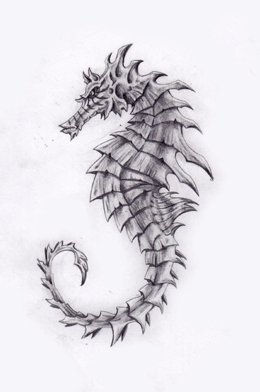 Drawn seahorse deviantart  and Drawing ~roerjm deviantART