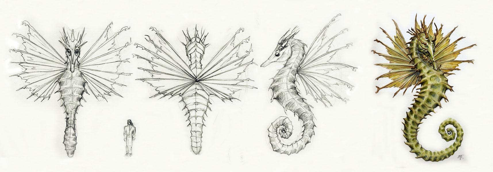 Drawn seahorse dragon Design Dragon FrancescaBaerald Dragon Dragon