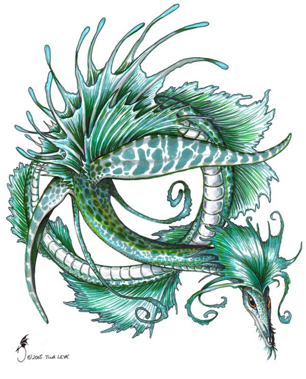 Drawn seahorse dragon Drawing dragon Leafy Sea Leafy