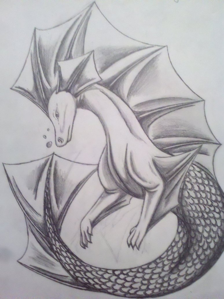 Drawn seahorse dragon Dragon DeviantArt Art14 by Seahorse