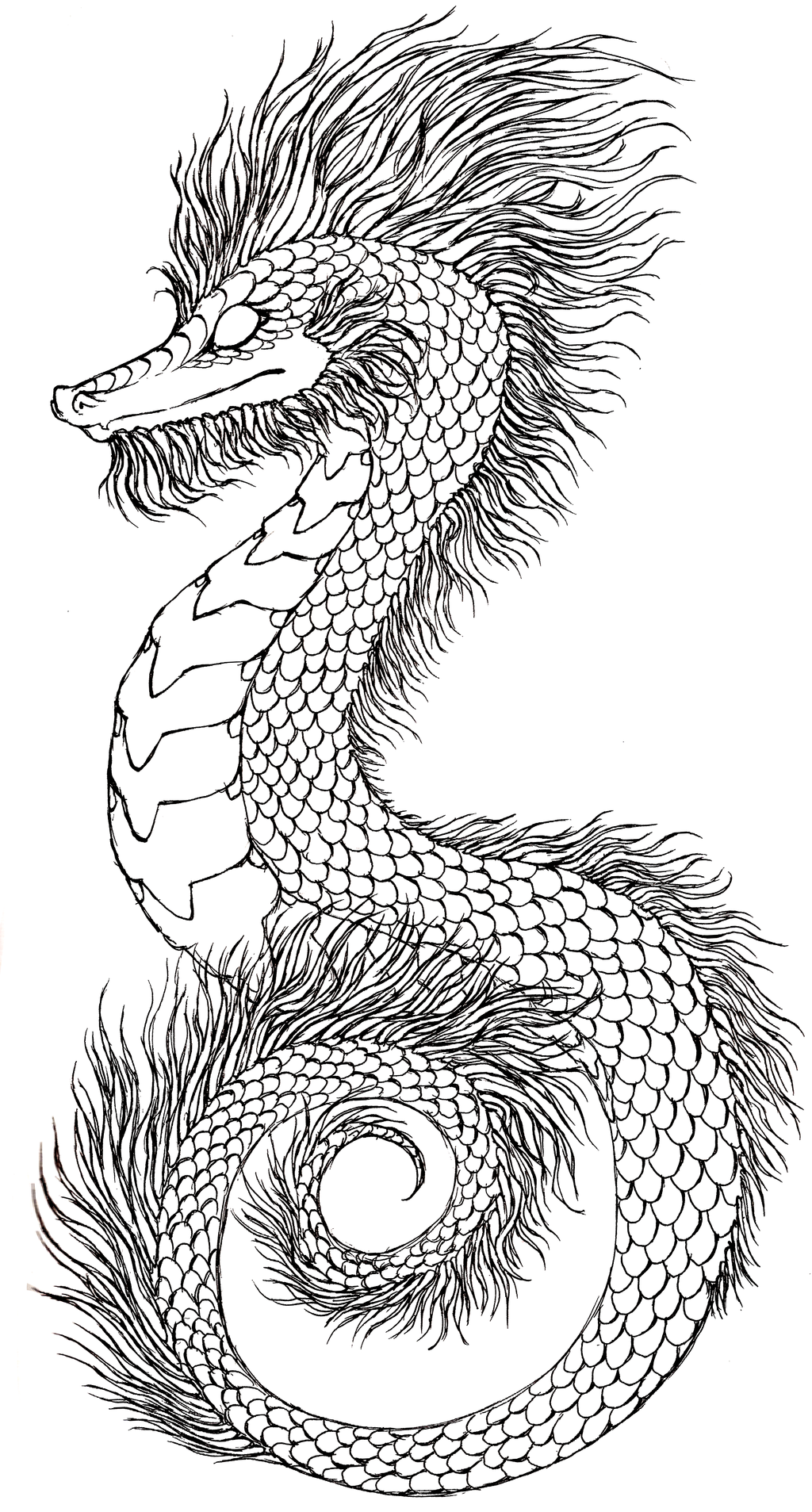 Drawn seahorse dragon Seahorse Drawing by Drawing Lucieniibi