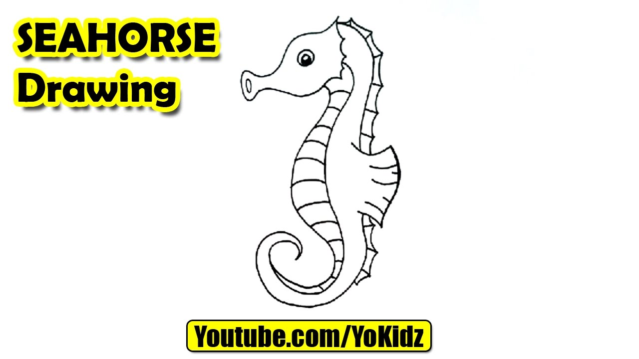 Drawn seahorse line drawing Unsubscribe to draw a How