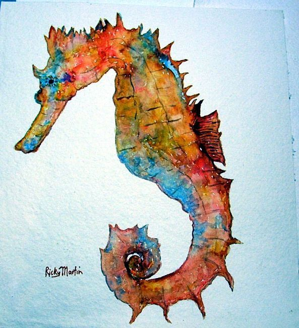 Drawn seahorse ocean animal Seahorses on Pin Pinterest Find