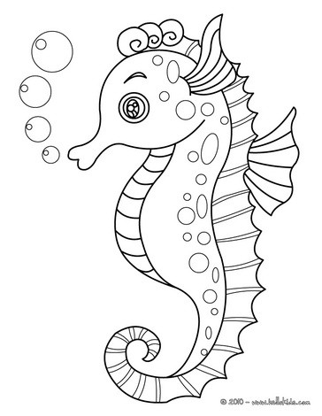 Drawn seahorse ocean animal ANIMALS pages pages ANIMALS Seahorse