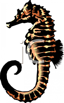Drawn seahorse realistic Math Download Clipart Realistic Book