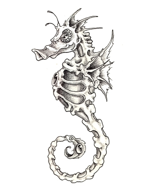 Drawn seahorse skeleton Photo Tattoo photo Skeleton Drawing
