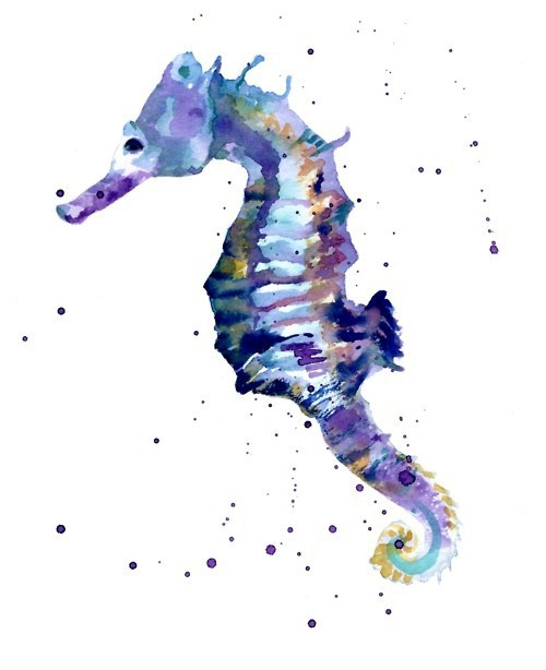 Drawn seahorse watercolor Seahorse best Seashell images seahorse