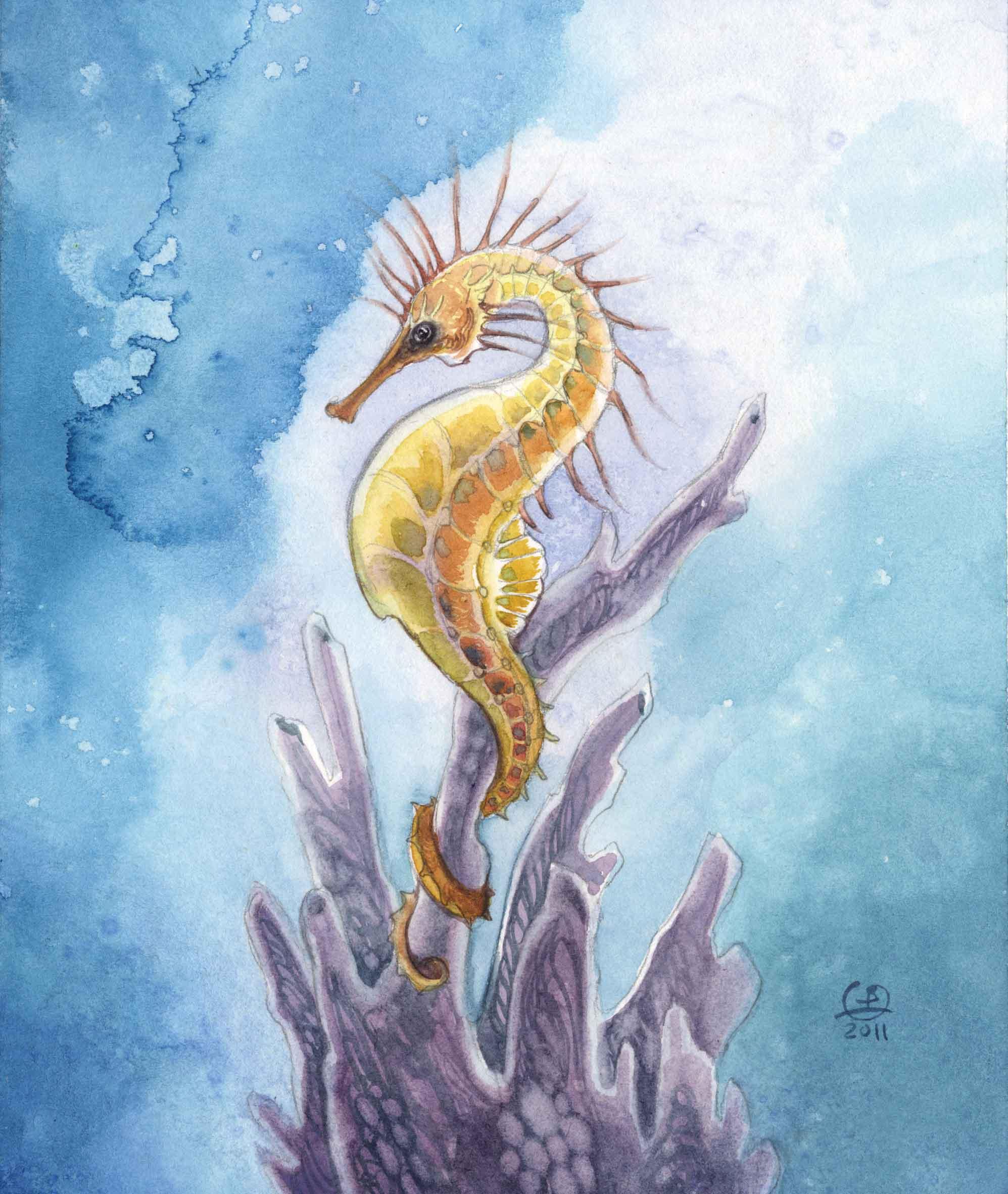 Drawn seahorse watercolor Fantasy Seahorse Create Creatures Fantasy