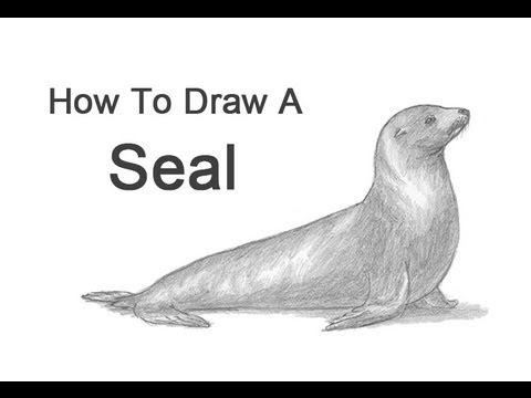 Drawn seal A Lion) Draw Seal to