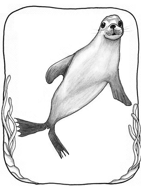 Drawn seal Lesley calm » Beth More