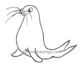 Drawn seal Seal Drawings Cartoon Draw A